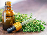 Red Thyme Essential Oil