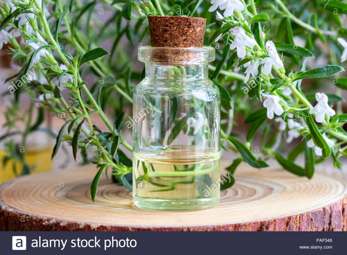 Winter Savory Essential Oil