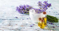 Lavender Essential Oil Bulgaria