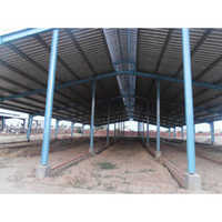 Dairy Farm Shed Structure