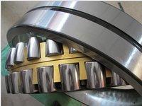 Spherical Roller Bearing E1 Type