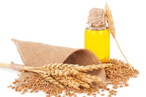 Oat Seed Carrier Oil