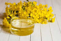 Rapeseed Carrier Oil