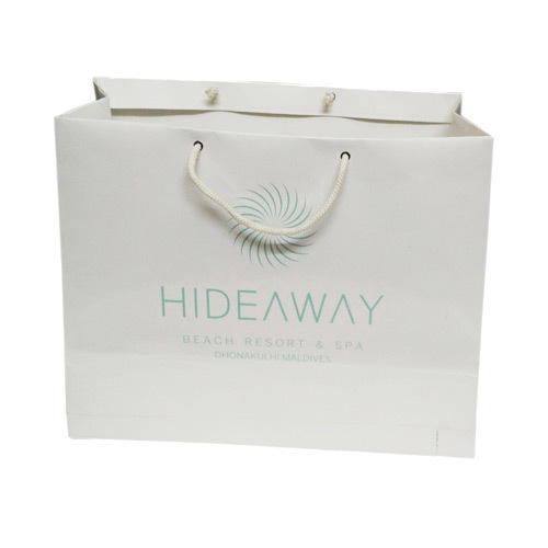 Printed Shopping Paper Carry Bag