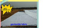 Non Woven Needle Punch Geotextile