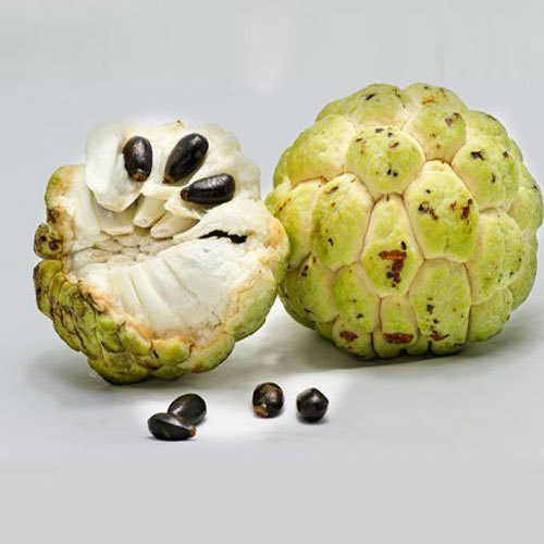 Sitaphal Seed Oil