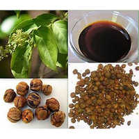 Jyotishmati Seed Oil