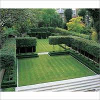 Lawn Treatment Service