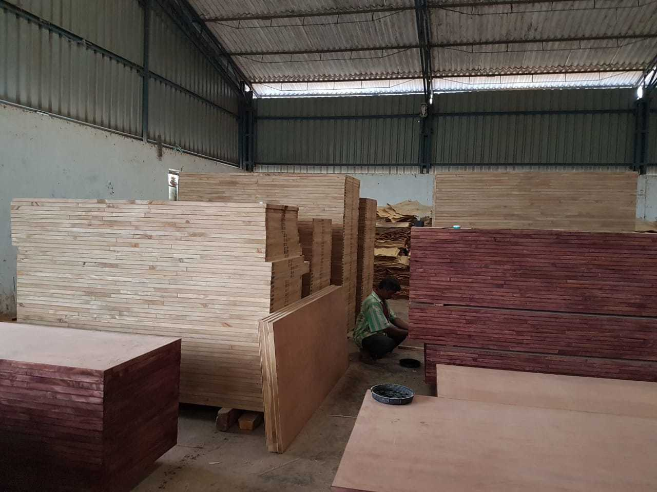 PLYWOOD POPULAR PLY