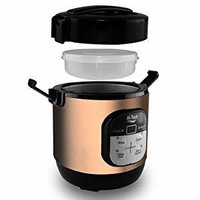 Mini Multi-cooker