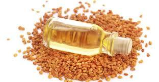 Essential Fenugreek Oil