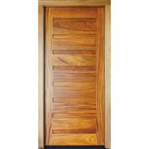 Polished Flush Door