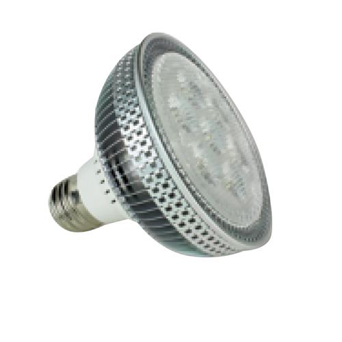 PAR30 12W LED Spot Lamp