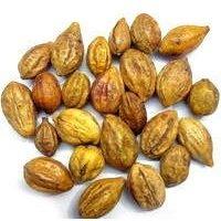 Myrobalan Seeds