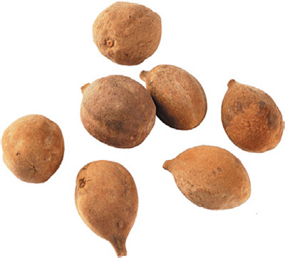 Terminalia Bellerica Fruit Seeds