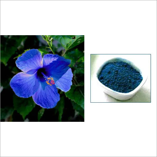 Natural Blue Food Flavour