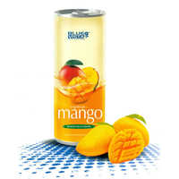 250 ml Magnificent Mango Fruit Drink
