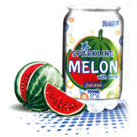 300 ml Canned Melon Fruit Drink