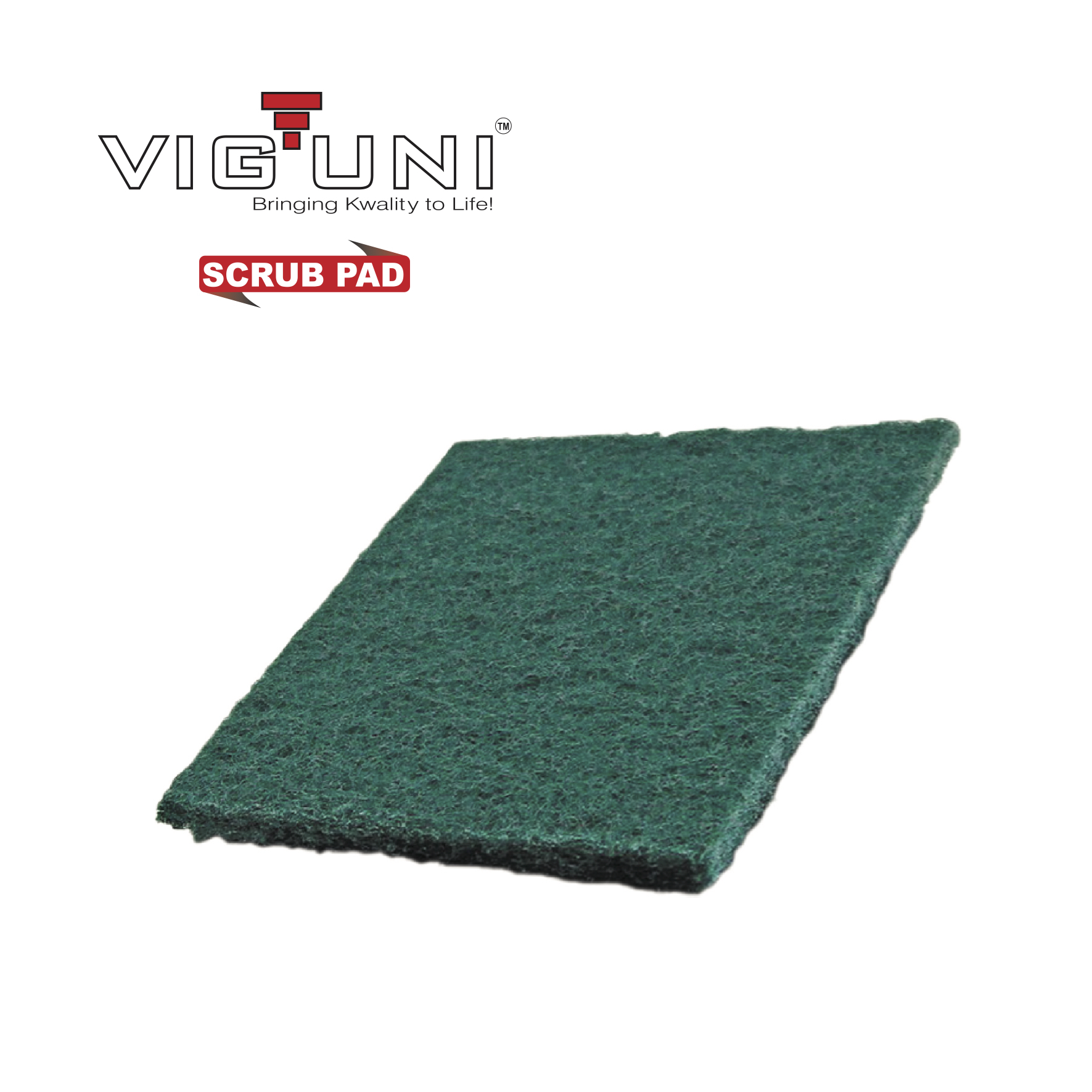 VIGUNI Scrub Pad (Nylon) - 3x4