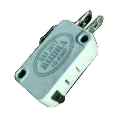 10 AMP RO Micro Switch