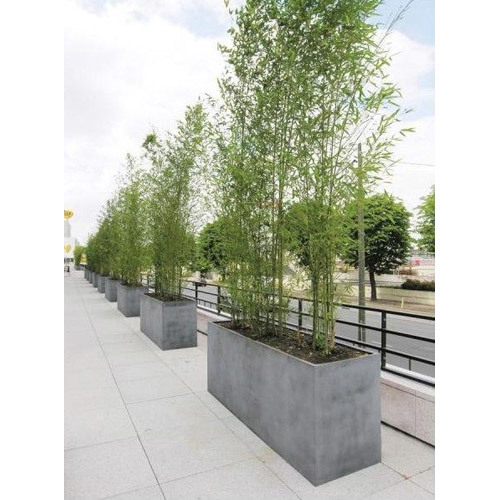 Outdoor Concrete Planter
