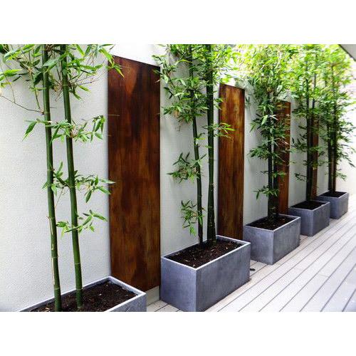 Showrooms Concrete Planter