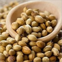 Coriander Seeds Best Quality Grade 1 From Kinal