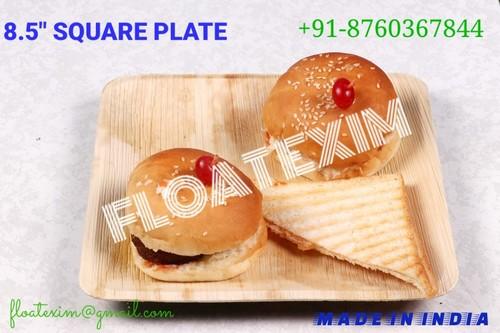 Areca Leaf Square Plate