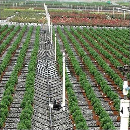 Drip Farming Services