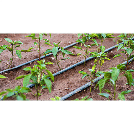 Drip Irrigation Tube