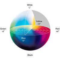 Color Distribution Calcium Carbonate Powder