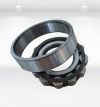 Steel Tapereed Roller Ball Bearings