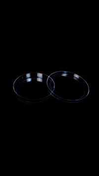 Plastic Petri Dish