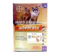 ADVOCATE CAT 0.8ml