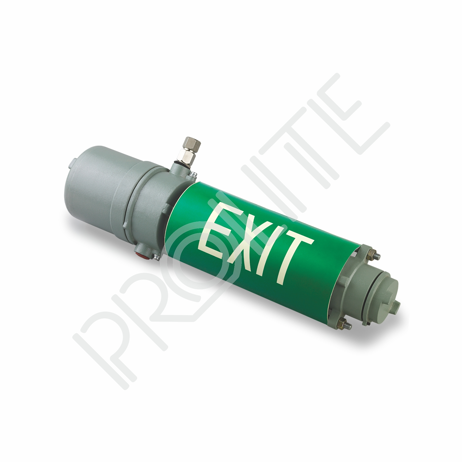 Firefly EXIT Flameproof Emergency Light