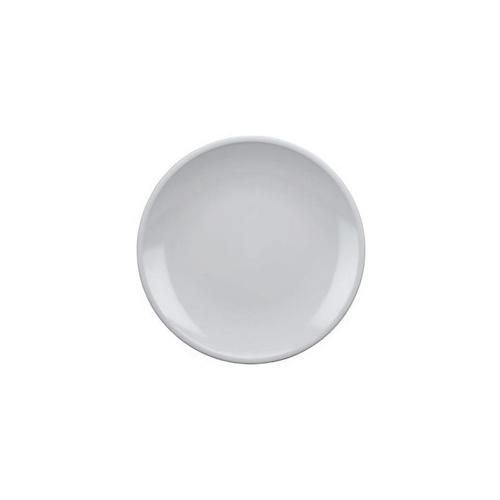 Acrylic Dinner Plate