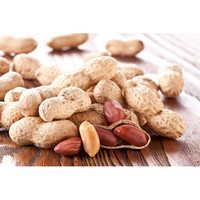 Raw Shell Peanuts