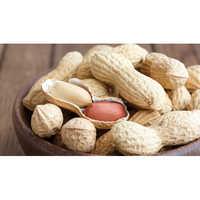 Raw Groundnut Peanuts