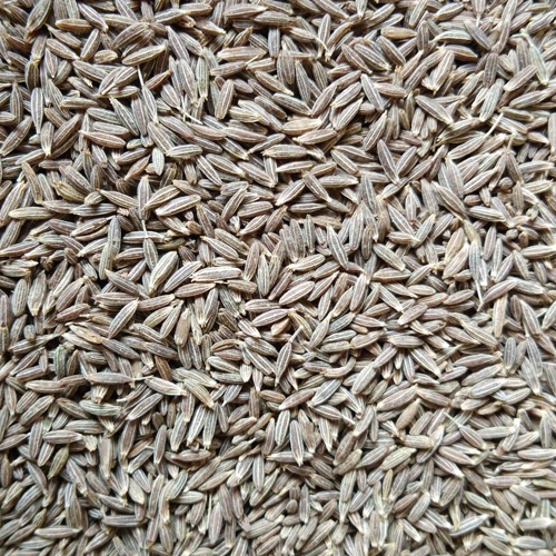 Cumin Seeds-Medium Bold Quality