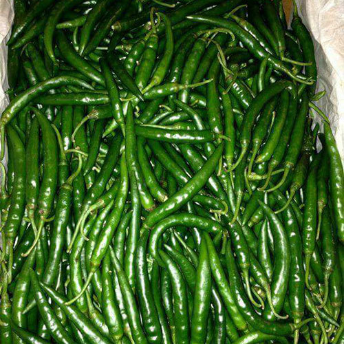 Fresh Green Chilli Vegetable