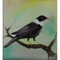 Nature Bird Painting