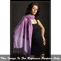 Ladies Shaded Pashmina Shawl