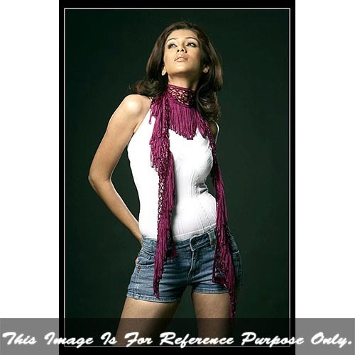 Ladies Fancy Scarf With Fringes