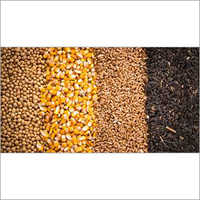 Organic food Grains