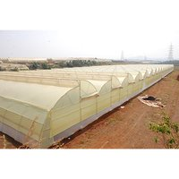 Naturally Ventilated Poly Greenhouse