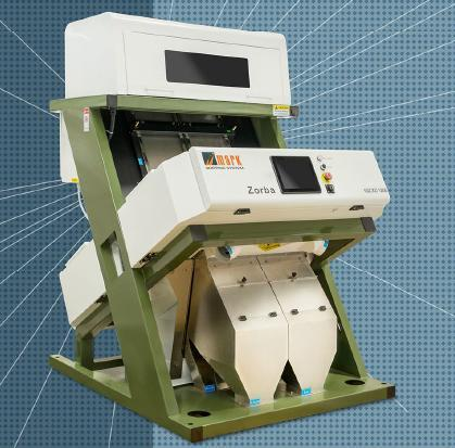 Badam Color Sorter Machine