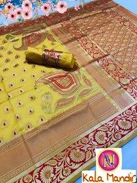 Indian Traditional Sari