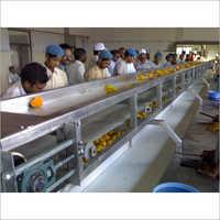 Mango Processing Line