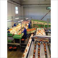 Fruit Juice Processing Line