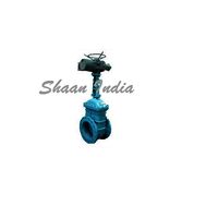 Electric Gate valve